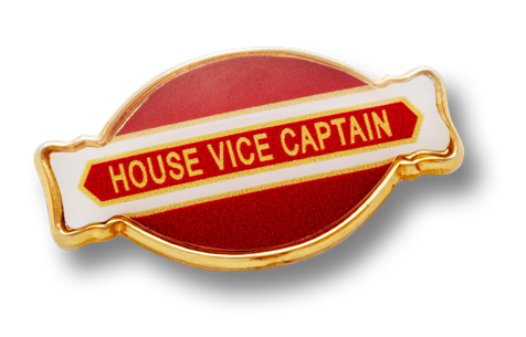 Metal Oval Badge